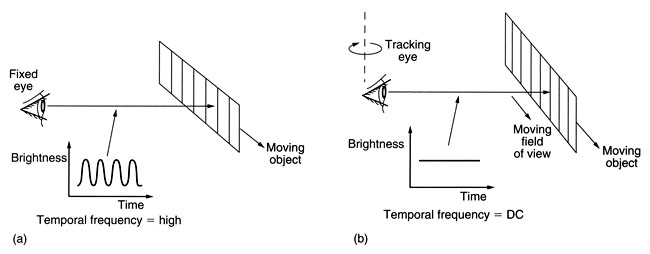 motion_tracking_and_eye_movement