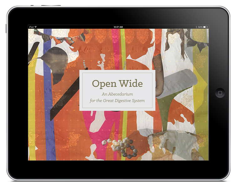 OpenWide_Cover
